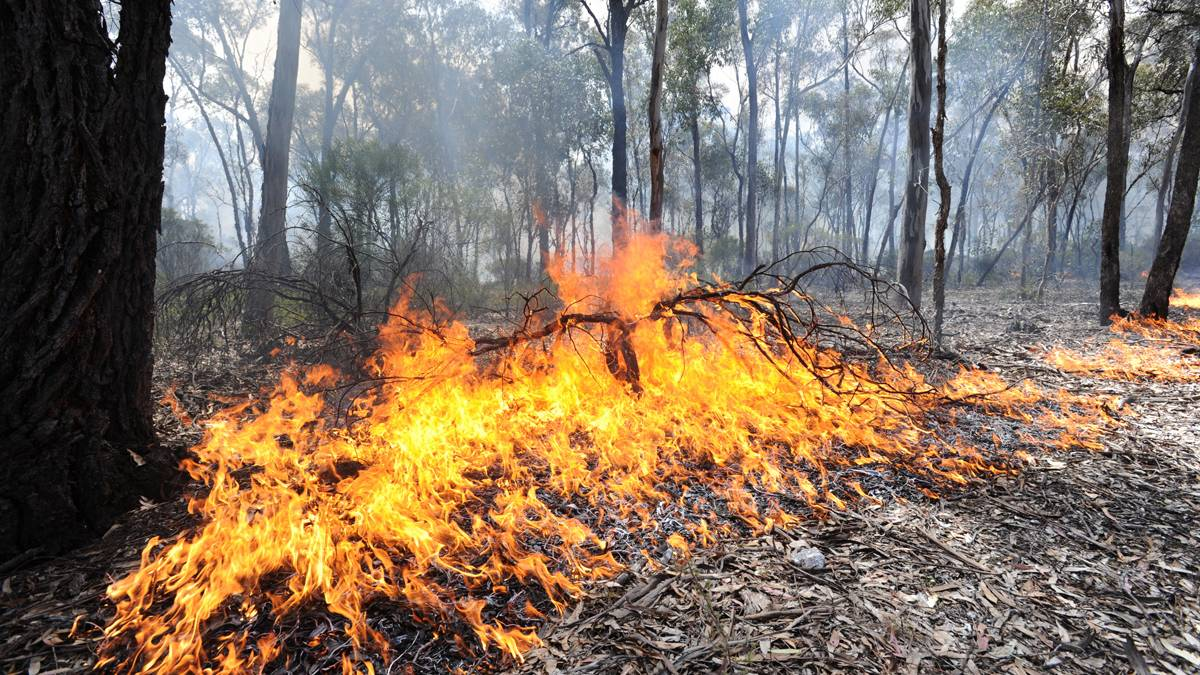 FUEL REDUCTION: Forest Fire Management will start a planned burn on Thursday, April 9 near Halls Gap.